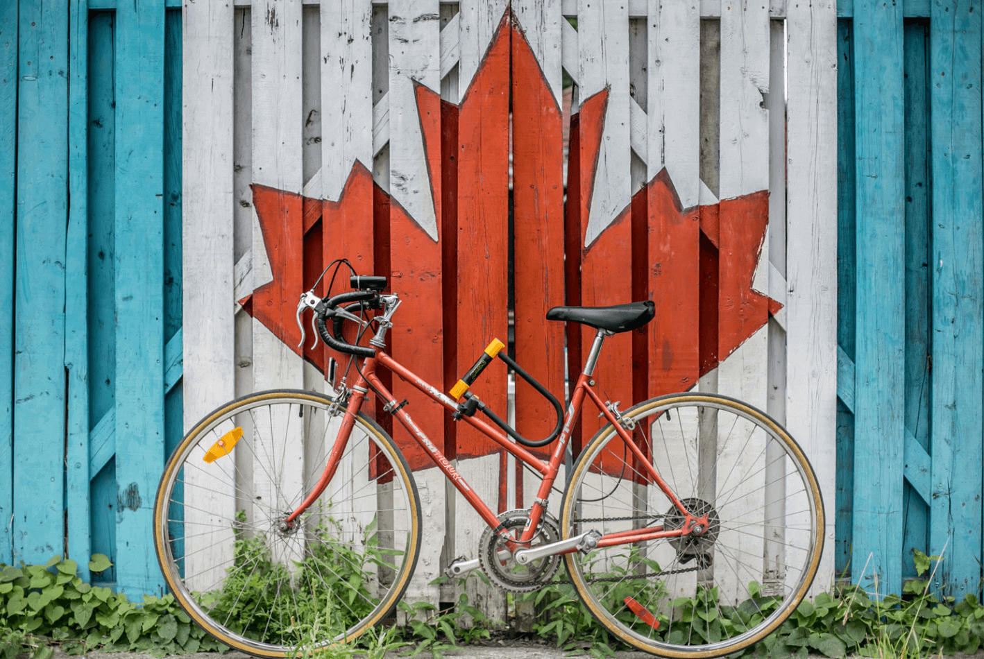 Bike in front of Canadian Flag Painted Fence.