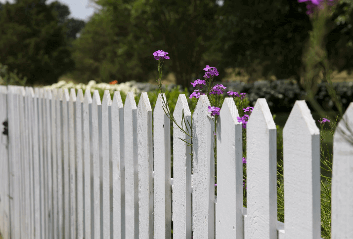 Fence Painted White.